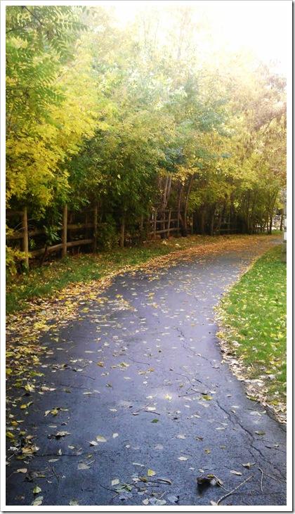 run path 5