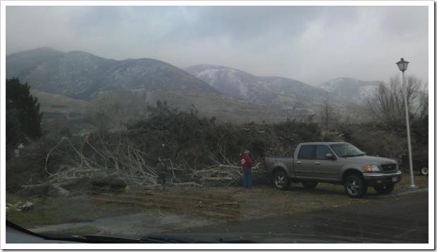 park wind storm pile