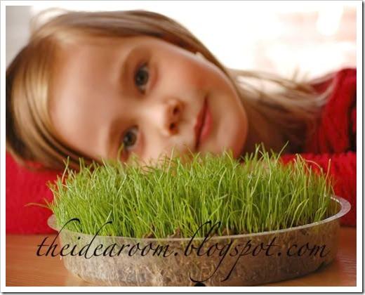 easter grass 2