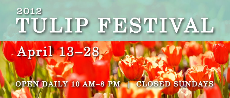 Tulip Festival Giveaway
