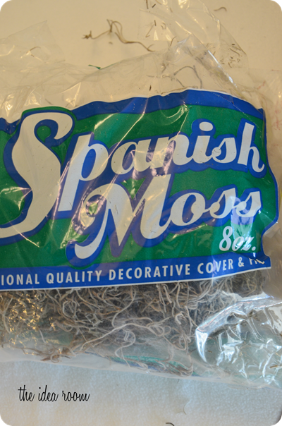 spanish-moss_thumb3