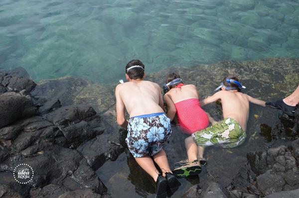 Kauai 23wm