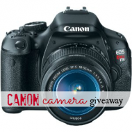 Are You At Risk? Canon Camera Giveaway