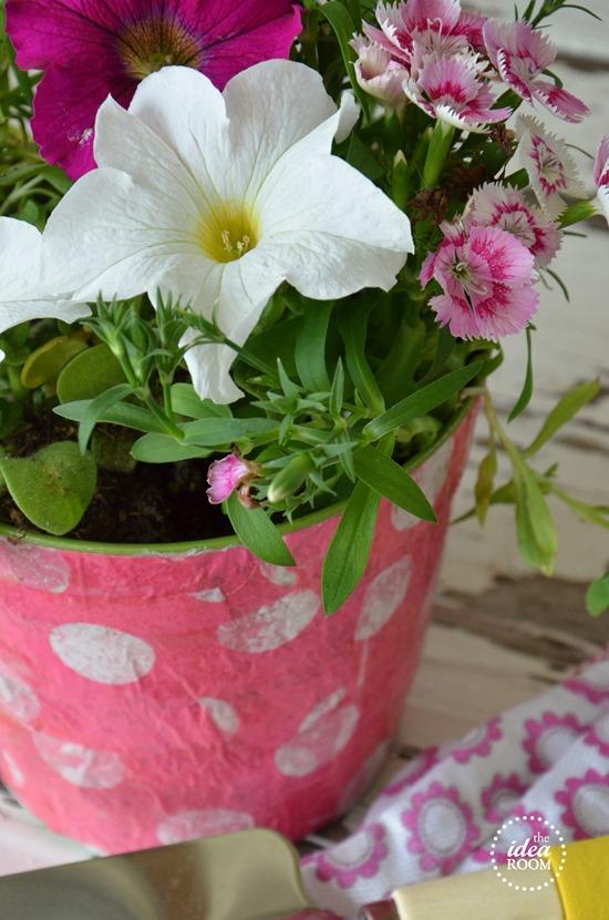 flower-craft 2