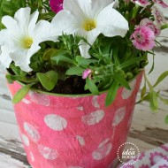 dress up your Flower pots