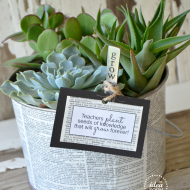 Grow a Succulent Garden: Teacher's Gift