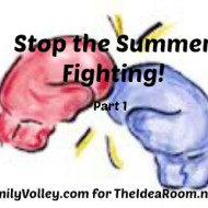 Stop the Summer Fighting