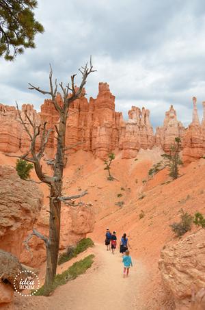 Bryce Canyon 036