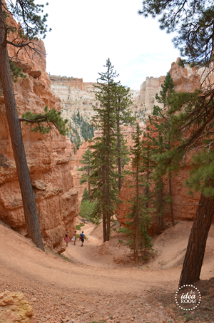 Bryce Canyon 061