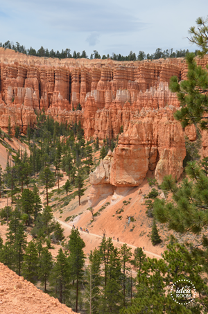 Bryce Canyon 085