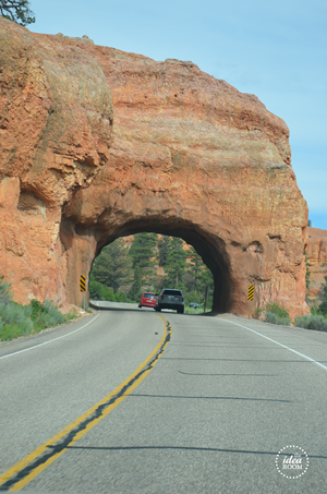 Bryce Canyon 254