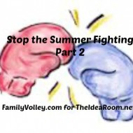 Stop the Summer Fighting–Part 2