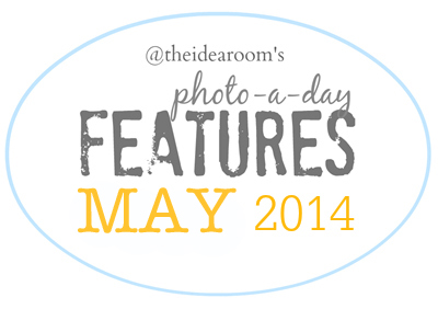 Photoaday-May-Features