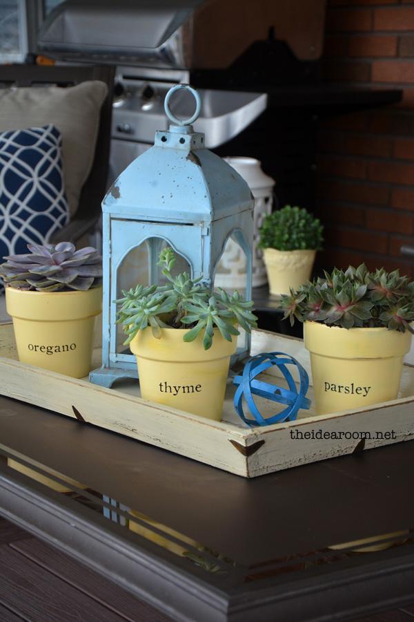 succulent-planters
