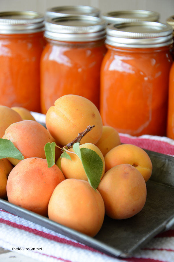 Apricot Jam and Printable Jam Labels - The Idea Room