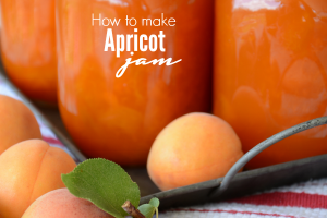 Apricot-Jam cover