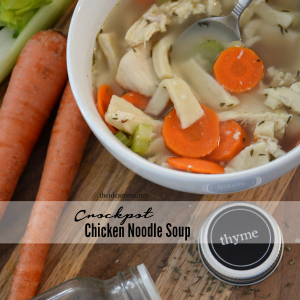Chicken Noodle Soup cover