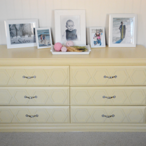 painted-dresser 3