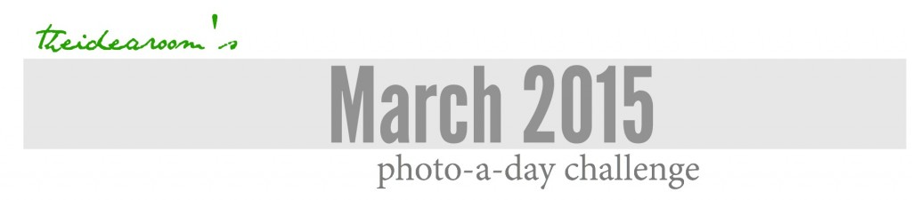 march photo a day cover