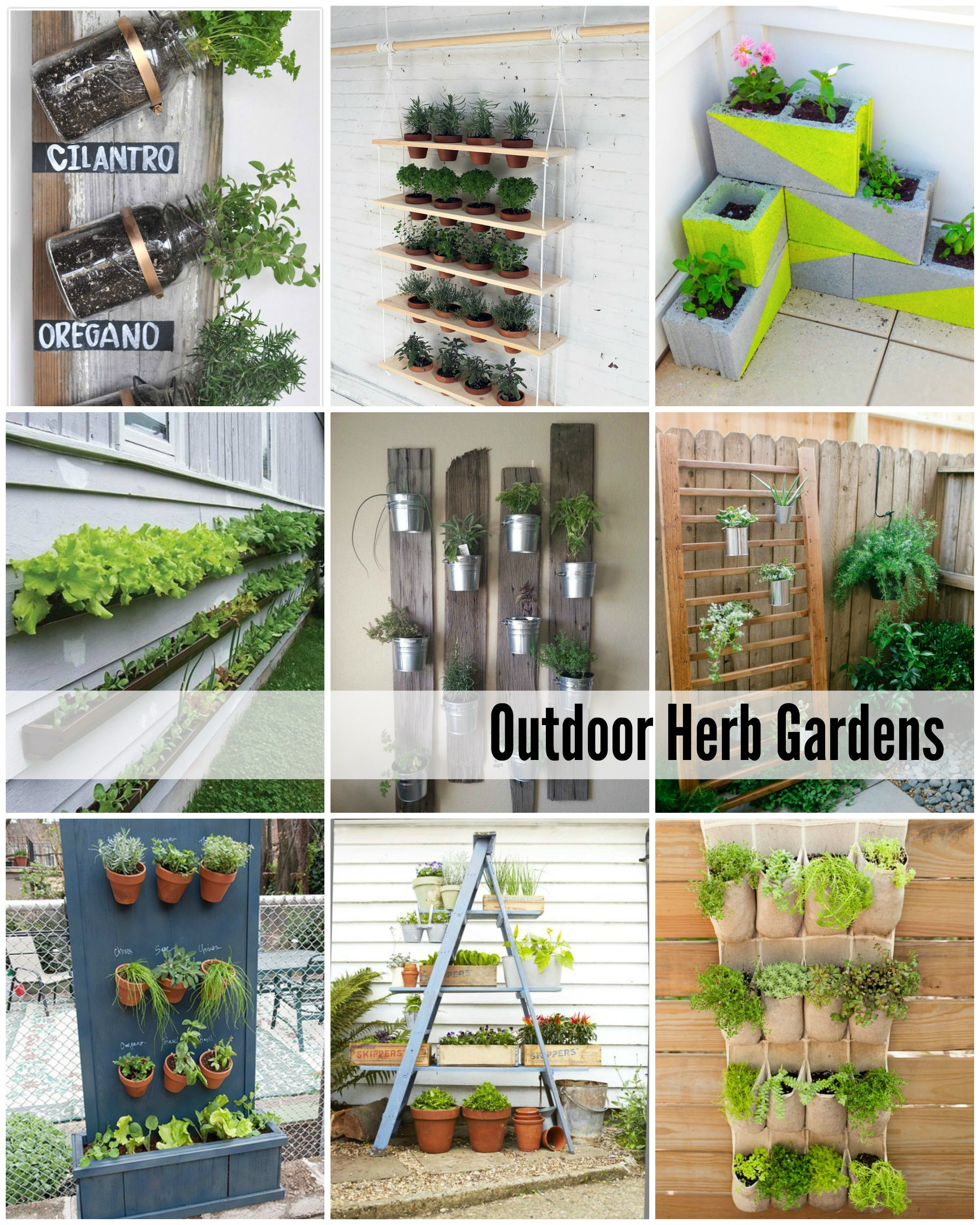 Delighful Outdoor Herb Garden 12 Best Herbs To Grow Indoors With Ideas