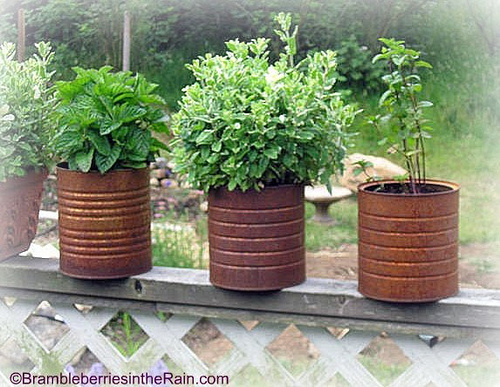 Simple Kitchen Herb Garden backyard herb garden ideas | garden ideas and garden design