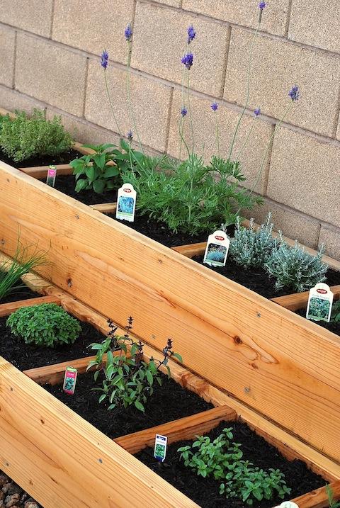 Awesome Herb Garden Box Ideas Part - 7: Hanging Bottle Herb Garden From 11 Eureka