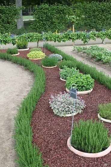 Outdoor Herb Garden Ideas - The Idea Room
