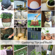 Gardening Tips and Hacks