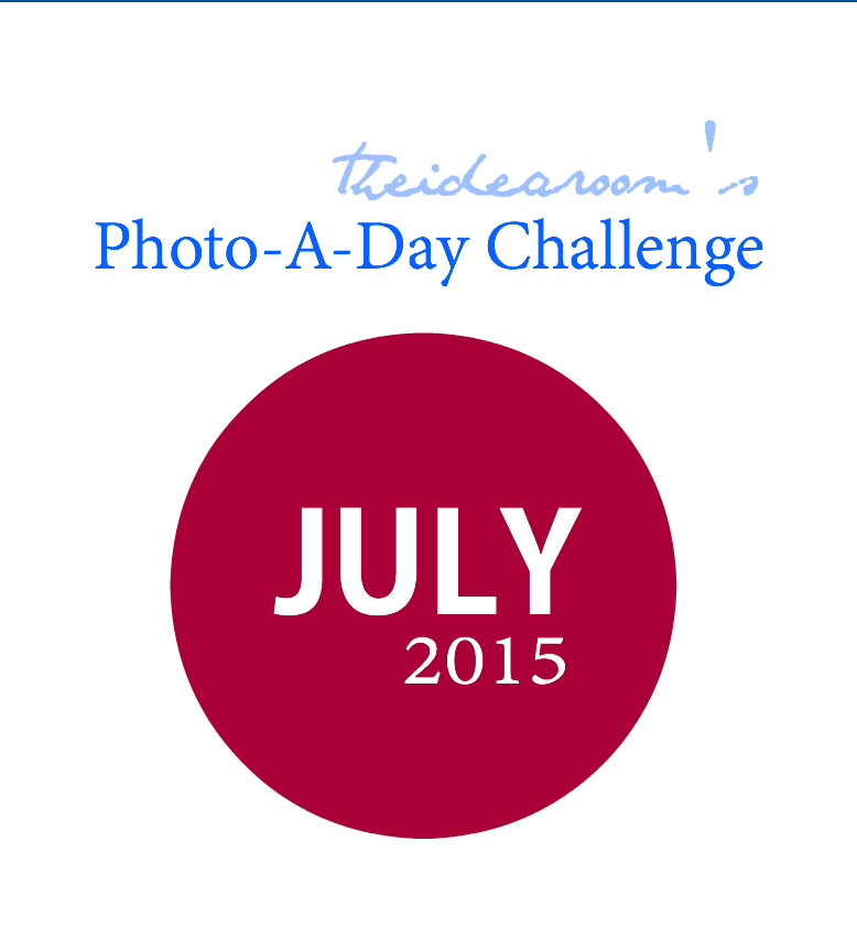 July Photo A Day Cover
