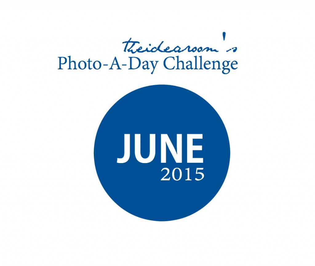 June Photo Challenge Cover