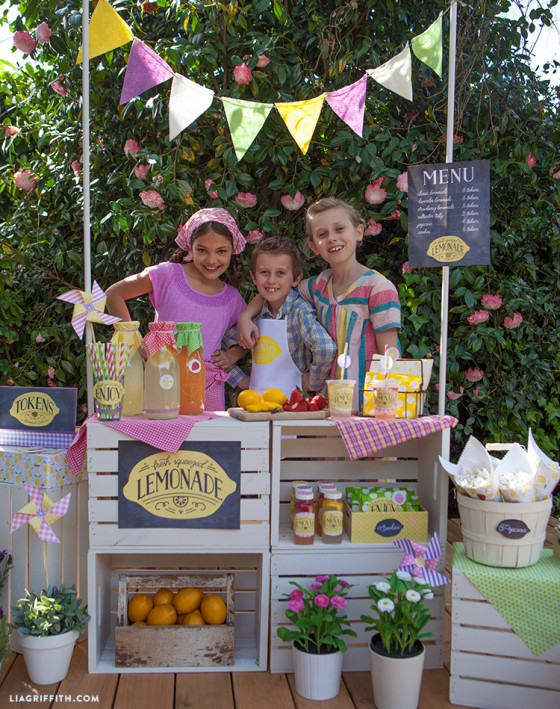Cardboard Lemonade Stand Diy - DIY Campbellandkellarteam