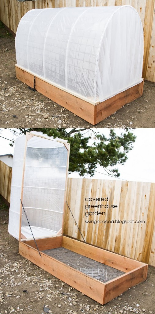 covered greenhouse