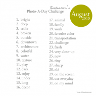 June Photo-A-Day Challenge 2015