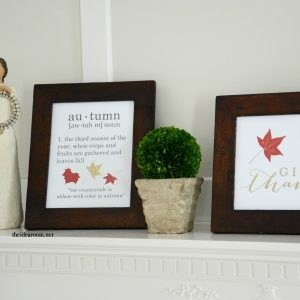 http://www.theidearoom.net/wp-content/uploads/2015/08/DIY-fall-signs-FB-300x300.jpg
