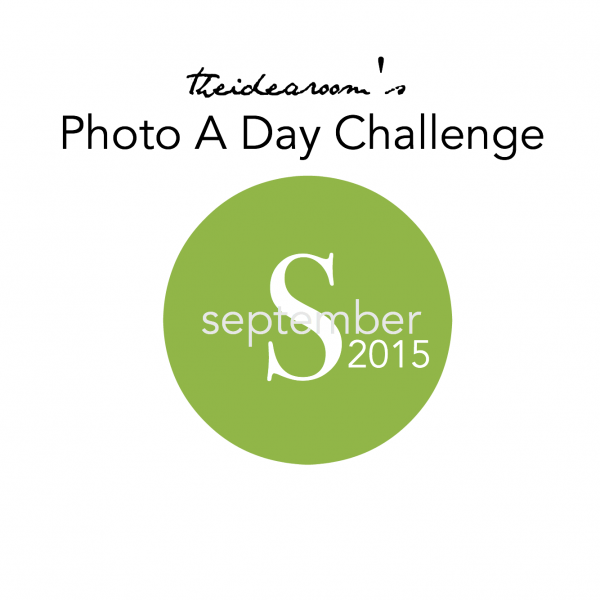 September-Photo-A-Day theidearoom.net