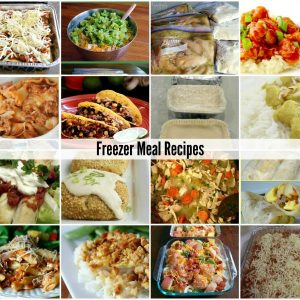 http://www.theidearoom.net/wp-content/uploads/2015/09/Freezer-Meals-Dinner-Recipes-FB.jpg1_-300x300.jpg