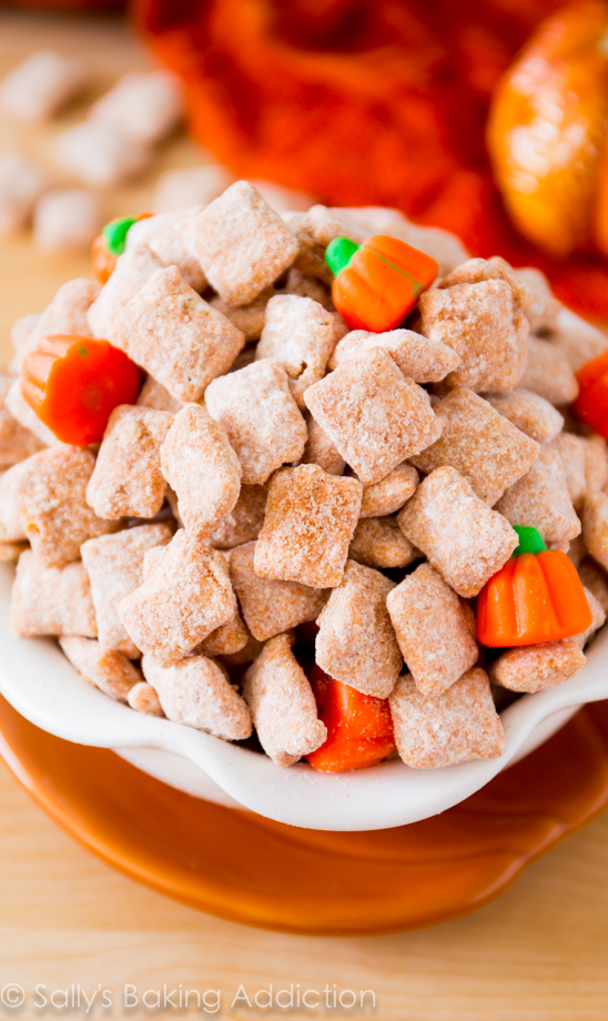 Yummy-Pumpkin-Spice-Puppy-Chow_-3