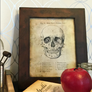 http://www.theidearoom.net/wp-content/uploads/2015/10/Halloween-Skull-Printable-FB-300x300.png
