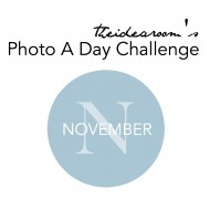 November Photo A Day Challenge