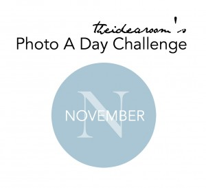 november photo challenge cover no border