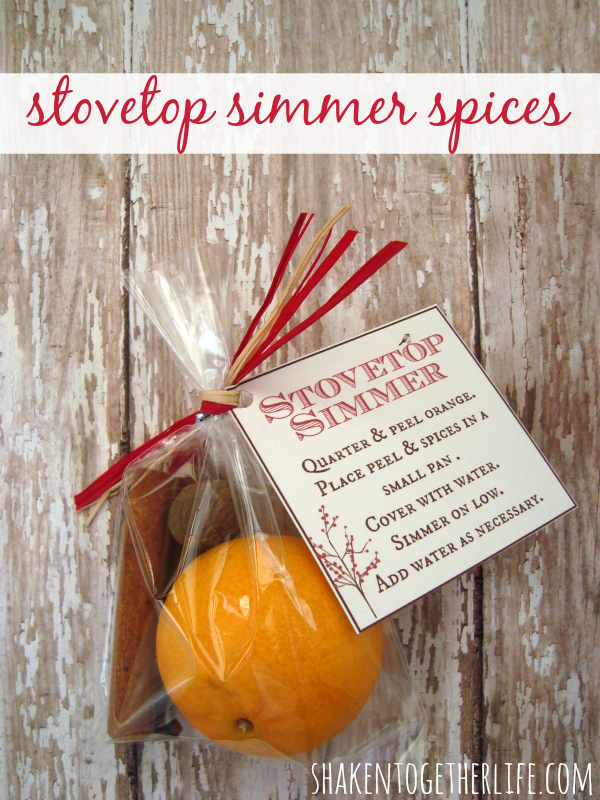stovetop-simmer-spices-gift-shakentogether