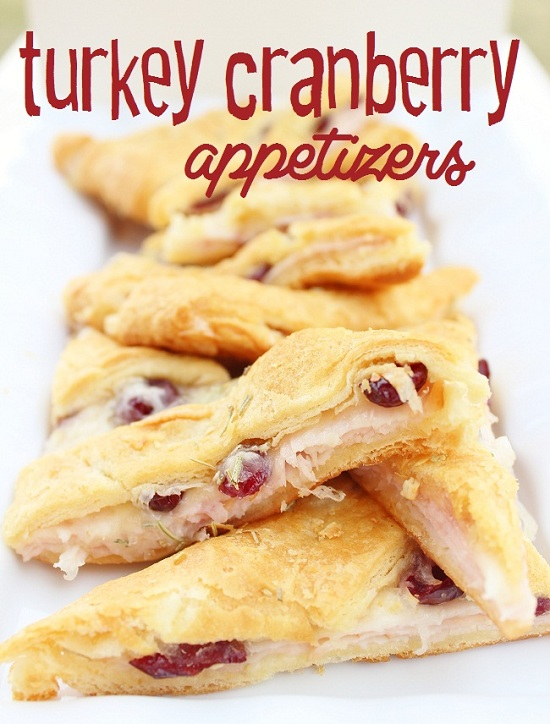 turkey+cranberry+appetizers+2