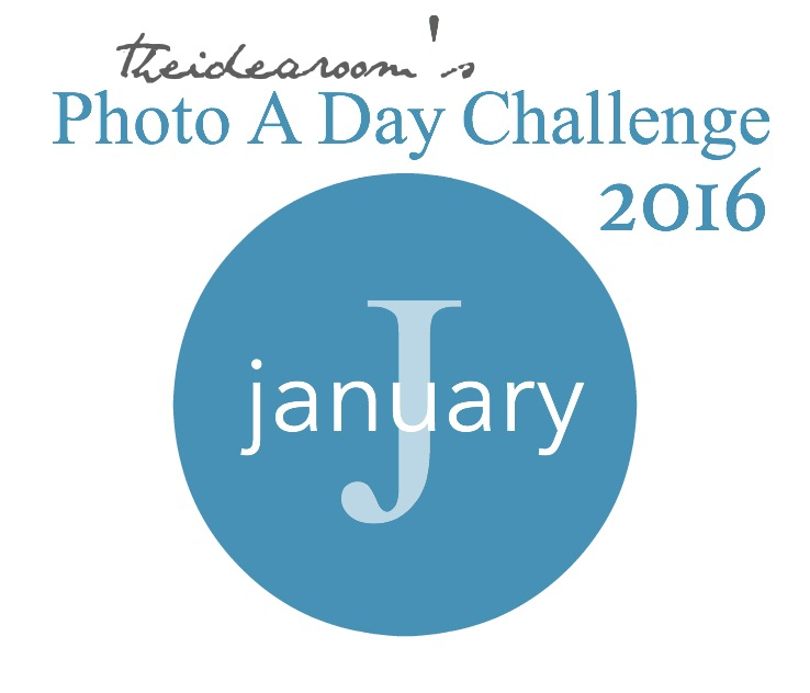January Photo a Day 2016 cover