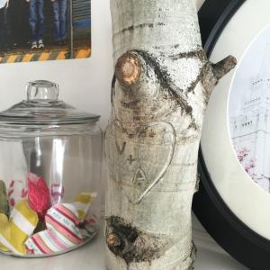 Tree-Stump-Initials