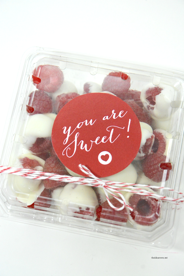chocolate covered raspberries 11
