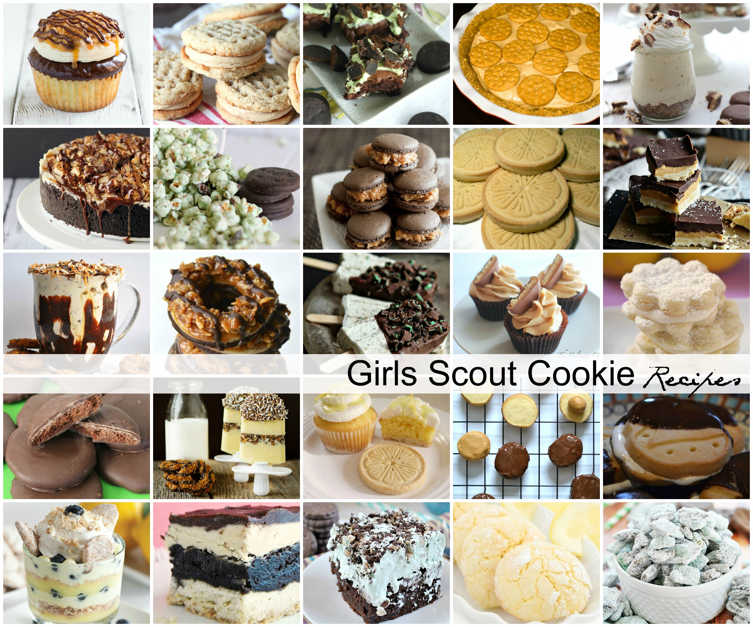 Girl-Scout-Cookie-Recipes-Copycat-1 (1)