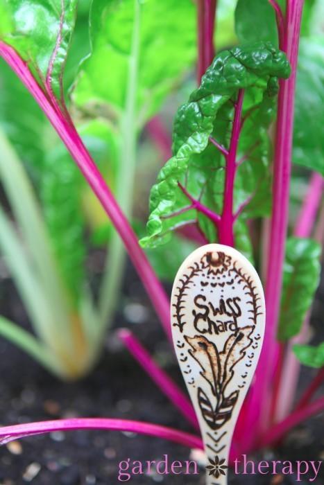 Herb Garden Labels Diy