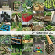 DIY Garden Bed Ideas