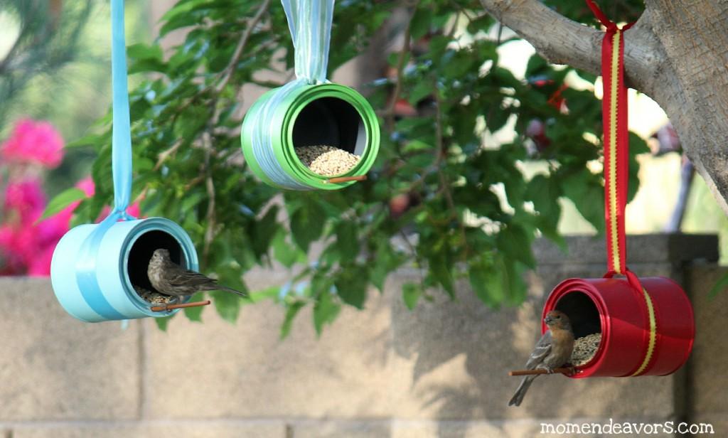 Birds-on-DIY-Bird-Feeders1-1024x616