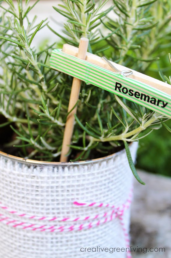 Cute DIY plant markers from clothespins. I love this!